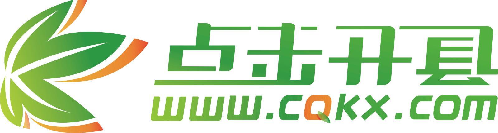 重庆盛点科技有限公司